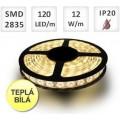 LED pásek 120ks 2835 12W/m TEPLÁ, cena za 1m
