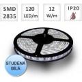 LED pásek 120ks 2835 12W/m STUDENÁ, cena za 1m