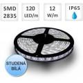 LED pásek 120ks 2835 12W/m STUDENÁ voděodolný, cena za 1m